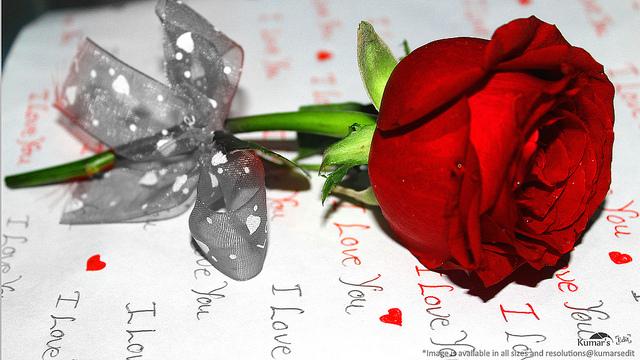 indahnya jatuh cinta